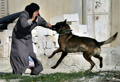 Israeili attack dog used against a civilian